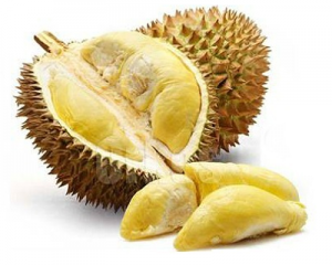 1 Day Durian Feast at Desaru
