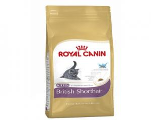 Royal Canin Kitten British short hair